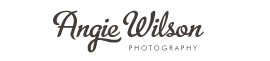 Angie Wilson Photography logo